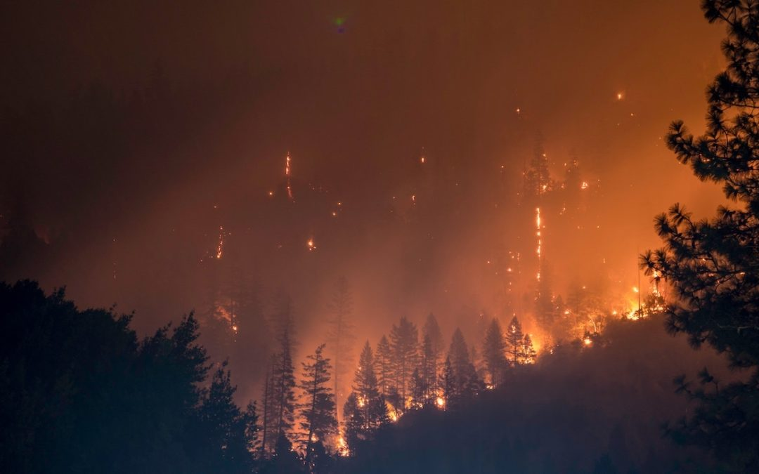 california wildfire burning trees and mountains firefighters